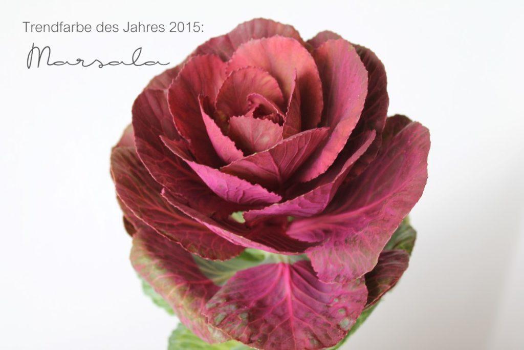 trendfarbe des jahres 2015 marsala tiziano design. Black Bedroom Furniture Sets. Home Design Ideas