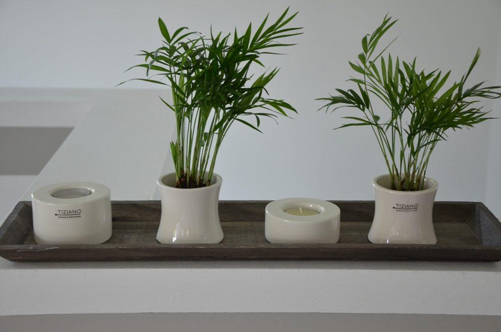 kleine gef e gro e wirkung dekoideen f r minipflanzen. Black Bedroom Furniture Sets. Home Design Ideas