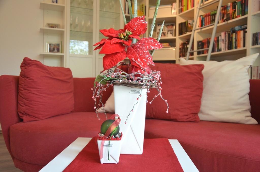 weihnachtssterne als adventsdeko tiziano design. Black Bedroom Furniture Sets. Home Design Ideas